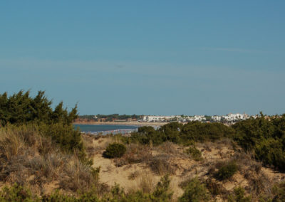 Dünenlandschaft bei Novo Sancti Petri