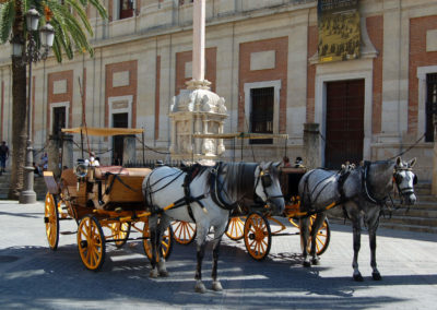 Pferdekutsche in Sevilla