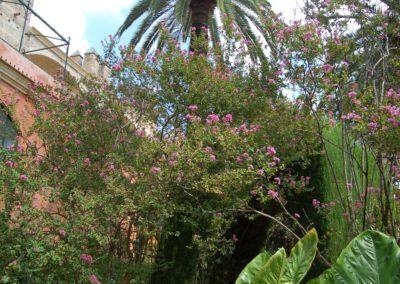 Stadtpark Sevilla