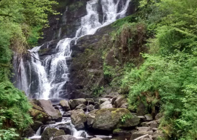 Muckross: Killarney National Park