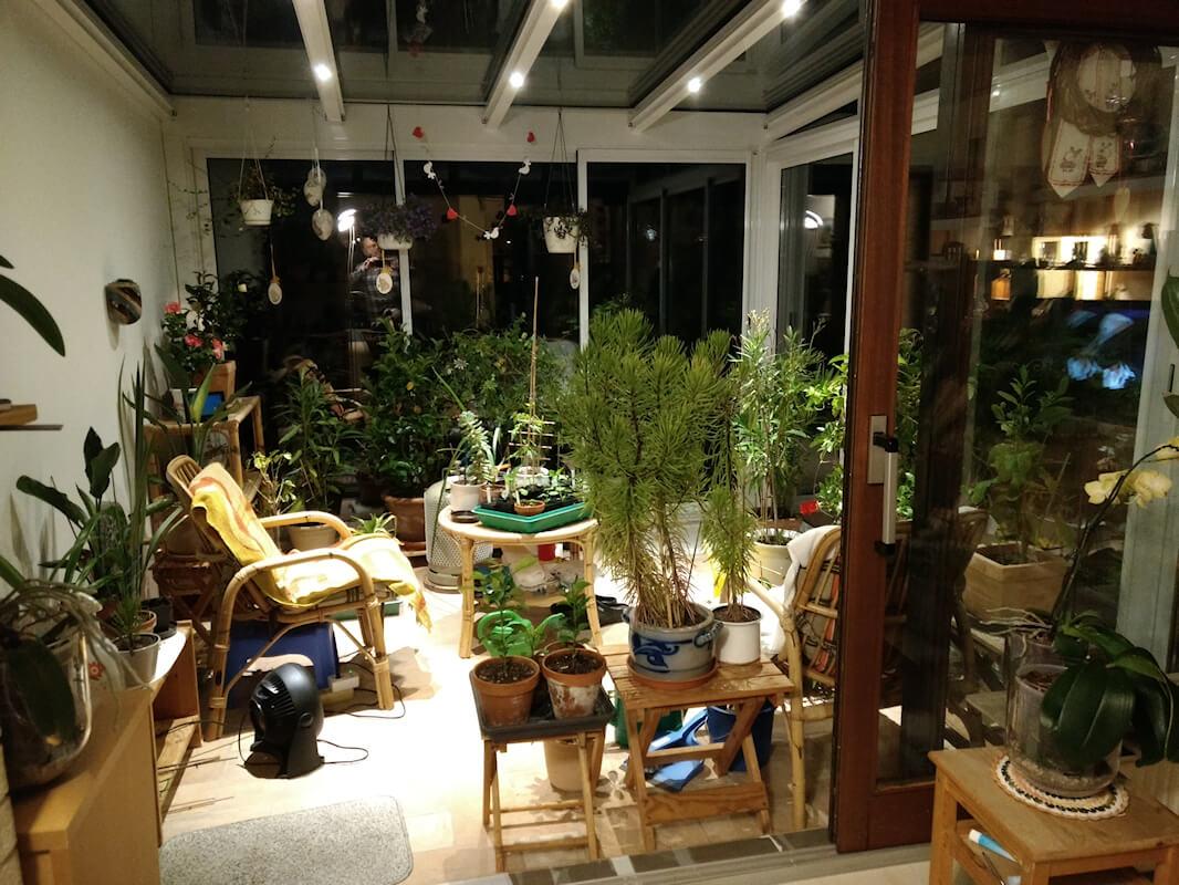 Wintergarten bei Nacht, Ansicht vom Wohnzimmer aus