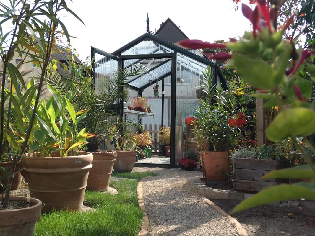 Gewächshaus mit Kiesweg und Kübelpflanzen